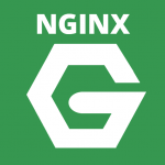 Nginx Virtual Host 設定教學