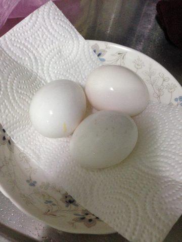 假掰溫泉蛋
